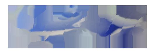 Logo Softsilk